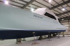 Pelicen 41