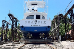 0004-seafix-2