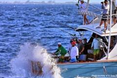 JICHI fishingBVI2014