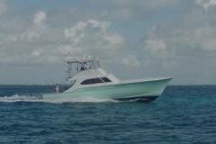 hull-119-pelican
